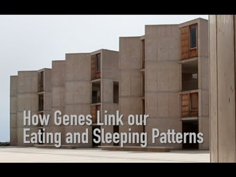 Satchin Panda of the Salk Institute explains his latest discovery and how it links our genes with our sleeping and eating patterns.