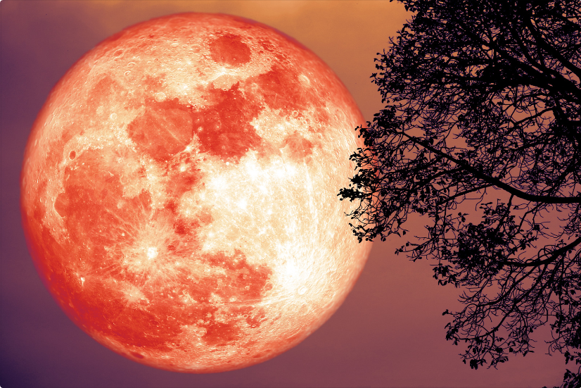 "Astrology: Total Penumbral Lunar Eclipse: June 5 2020 ""Strawberry Moon"" (Friday at 19:25 UT) 1"