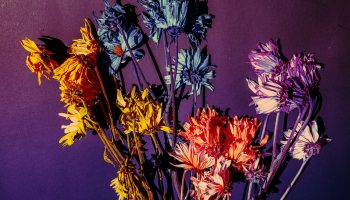 Neville Goddard on Drugs, Dope, Marijuana, LSD, Alcohol, Vegetarianism etc